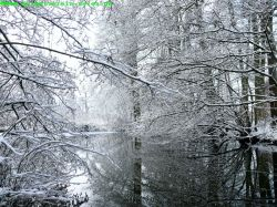 Saege-winter_03